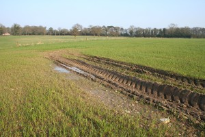 land drainage snippet 3