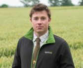 Feed Wheat Crops Well to Stay On Top of Disease