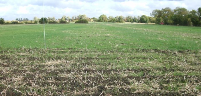 Less is more for autumn cultivations
