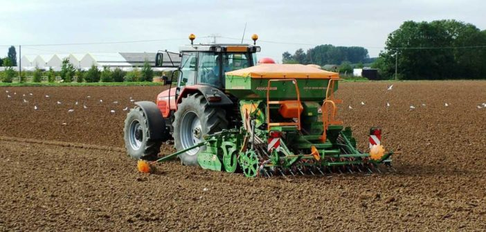 Act early to secure spring seed supplies