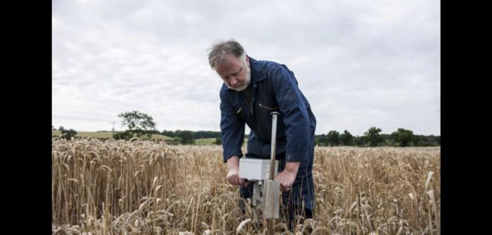 Rothamsted offering UK farmers a chance to test their own theories