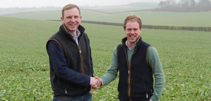 Making spring crops work for you