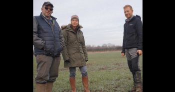 Trials look at cost-effective spring weed control.