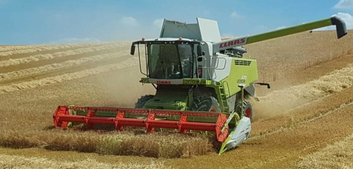 Increase profitability with versatile spring barley variety