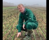 First strategic cereal farm for Scotland announced