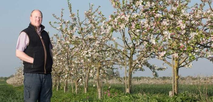 Forestry or farming?  Agroforestry offers a third way